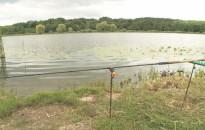 Újra horgászverseny volt a Csó-tónál