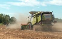 A sok csapadék miatt Zala megye egyes területein leállt az aratás