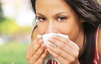 Pollenhelyzet - Kezdődik a parlagfűszezon