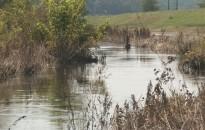 Fekete szennyeződés lepte el a Principális vizét Murakeresztúrnál