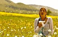 A lakosság húsz százaléka allergiás Magyarországon