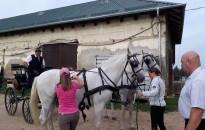 Sikeres vizsgát tettek a lovastúra-vezető képzés résztvevői