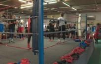 Négy bokszklub közös edzése Nagykanizsán