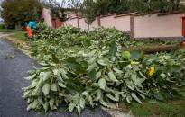 Kéményt, fát döntött, tetőt bontott a vihar Eszteregnyén
