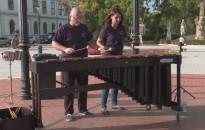 Percussion Projekt Pécs az Erzsébet téren