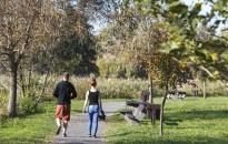Október első hétvégéjén még 20 fok feletti meleg várható