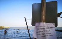 Tihanyi klímakutatás: a hőhullámok hatására jobban algásodik a Balaton