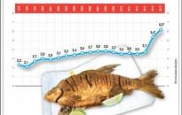 Elég hal lesz az év végi ünnepekre