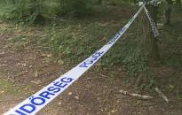 Tényleges életfogytiglant kapott a többszörös visszaeső zalaegerszegi gyilkos