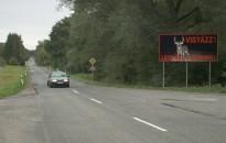 Vadveszély az utakon