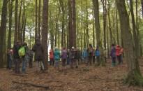 Szlovén - magyar együttműködés: Go in Nature