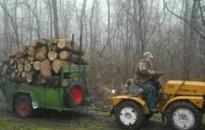 Módosultak az erdei fák szállításának szabályai és nyomtatványai