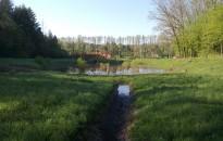 Vízzel telt meg a Békás-tó
