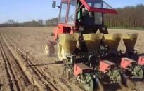 Megkezdődött a kukorica és a napraforgó vetése Zala megyében