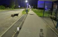 Elesett az elektromos biciklijével