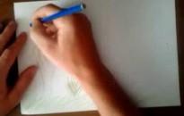 Vadászok hirdettek rajzpályázatot általános iskolásoknak