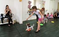 Terápiás kutyák vendégeskedtek a kishattyúknál