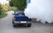 Földi szúnyoggyérítés lesz Kanizsán