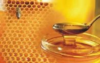 Agrárminisztérium: hét év alatt több mint duplájára nőtt a mézfogyasztás