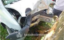Fának ütközött egy autós Nagykapornakon