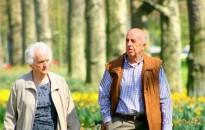 GKI: a nyugdíjasok többsége nem vállalna munkát