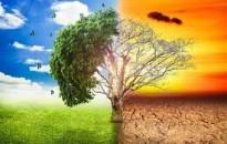 A kutatók előrejelzése szerint szokatlanul meleg lesz 2022-ig