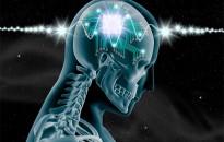 Agysejtek működését befolyásoló új módszeren dolgozik Buzsáki György agykutató