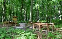 Ősszel is érdemes felkeresni az erdőket