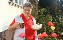 GasztroKanizsa: Túrós rózsa, rózsás teával