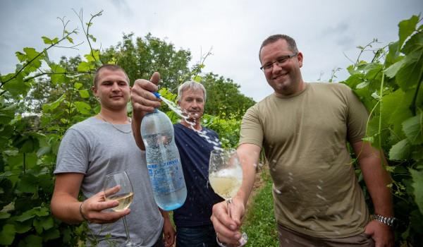 A bor és a szóda találkozásának ünnepe