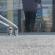 A kijárási korlátozás első délelőttjének tapasztalatai Kanizsán