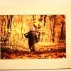 Erdő és ember, fotó: Bakonyi Erzsébet