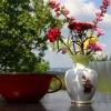 Szívbetegek majálisa, fotó: Bakonyi Erzsébet
