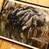 Az angyalok tisztásán, fotó: Bakonyi Erzsébet